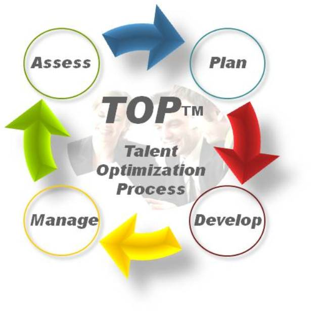 Talent Optimization Process